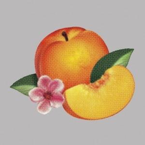 phoenix-bankrupt-608x608