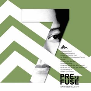 prefuse-73-15496