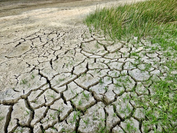 climate-change-2241061_1280